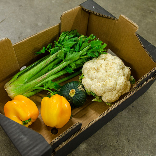 Foodsharing Box