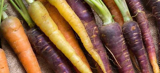 Sortenvielfalt bei VollCorner Biomarkt